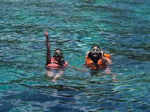 Wisata Pulau Menjangan Bali Barat, Snorkeling